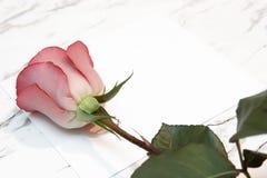 Rosa del rojo y la carta fotos de archivo