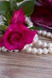 Rosa del rosa con las perlas Imagenes de archivo
