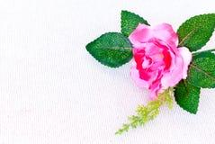 Rosa del rosa del primer en el pañuelo blanco de la textura Fotos de archivo libres de regalías