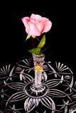 Rosa del rosa en el florero cristalino Fotografía de archivo
