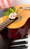 Rosa del rosa en la guitarra Imágenes de archivo libres de regalías