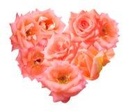 Rosa dell'arancia isolata nella forma del cuore Immagine Stock