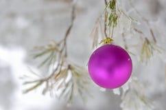 Rosa della palla di Natale Fotografie Stock