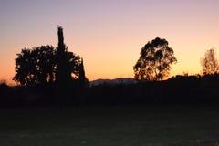 Rosa della Toscana e paesaggio arancio Fotografie Stock