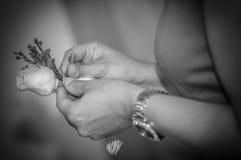 Rosa di bianco nella mano della damigella d'onore Fotografie Stock