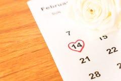 rosa di bianco sul calendario con la data del 14 febbraio Valentin Immagine Stock Libera da Diritti