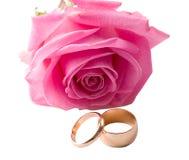 Rosa di colore rosa del primo piano e due anelli di cerimonia nuziale Fotografia Stock