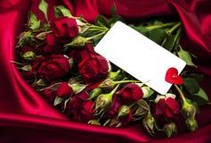 Rosa di colore rosso e cartolina d'auguri Fotografie Stock
