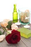 Rosa di colore rosso e salgemma Fotografia Stock