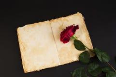 Rosa di porpora sullo stile di vecchio taccuino 1 Immagine Stock Libera da Diritti