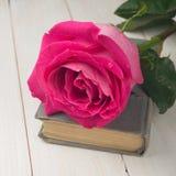 Rosa di rosa sul libro fotografie stock