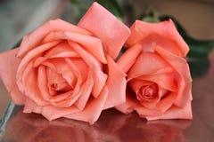 Rosa di rosa sull'alimento della tavola Fotografie Stock Libere da Diritti