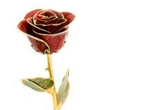 Rosa di vetro Fotografia Stock