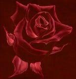 Rosa - disegno pastello Fotografia Stock