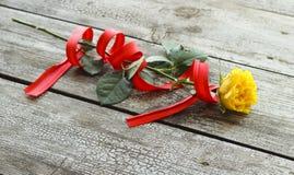 Rosa do amarelo com fita vermelha Imagens de Stock Royalty Free