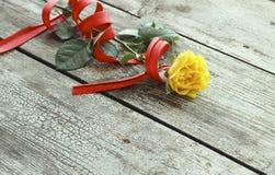 Rosa do amarelo com fita vermelha Imagem de Stock Royalty Free