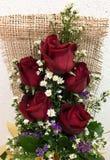 Rosa do amor fotografia de stock