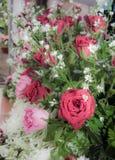 Rosa do amor Foto de Stock