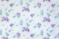 A rosa do azul floresce o teste padrão do contexto na textura do fundo da parede Fotografia de Stock