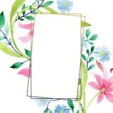 Rosa do ornamento e flores botânicas florais azuis Grupo da ilustração do fundo da aquarela Quadrado do ornamento da beira do qua ilustração stock