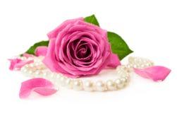 Rosa do rosa e colar da pérola Fotografia de Stock