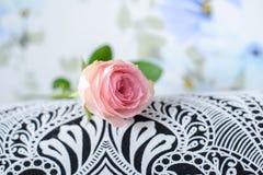 Rosa do rosa em superfícies preto e branco Fotografia de Stock Royalty Free