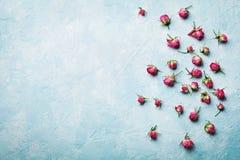 A rosa do rosa floresce na opinião de tampo da mesa azul do vintage no estilo da configuração do plano imagem de stock royalty free