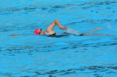 Rosa do Triathlon em Gold Coast Austrália Imagem de Stock