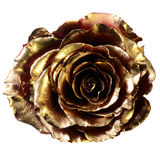Rosa do vermelho coberta com a pintura dourada Fotografia de Stock