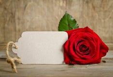 Rosa do vermelho com Empty tag para seu texto Fotografia de Stock Royalty Free