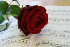 Rosa do vermelho com nota Imagem de Stock