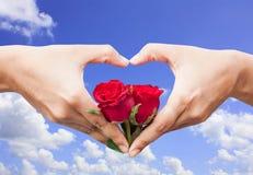 rosa do vermelho da posse da mão foto de stock royalty free