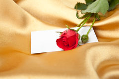 Rosa do vermelho e cartão em branco no cetim dourado Imagens de Stock Royalty Free