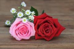 A rosa do vermelho e do rosa com água deixa cair no fundo de madeira fotos de stock