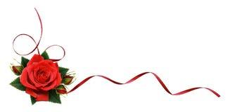 A rosa do vermelho floresce e a fita de seda no arranjo de canto imagem de stock