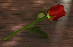 Rosa do vermelho na tabela de madeira escura Foto de Stock Royalty Free