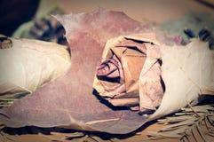Rosa do vintage feita pelas folhas da árvore e cercada pelo abeto e pelas folhas Foto de Stock Royalty Free