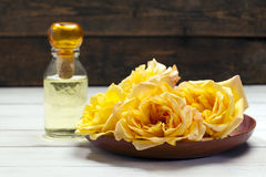 Rosa doft Royaltyfri Fotografi
