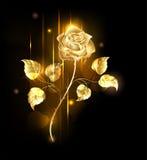 Rosa dorata Fotografie Stock Libere da Diritti
