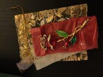 Rosa dräktsmycken in med guld- brytningar Arkivbild