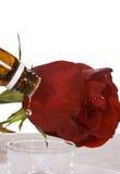Rosa e óleo foto de stock