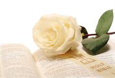 Rosa e Bíblia Imagens de Stock