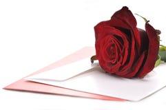 Rosa e cartão vermelhos Fotografia de Stock