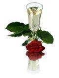 Rosa e champagne Fotografia Stock Libera da Diritti