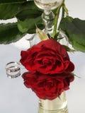 Rosa e champagne Immagini Stock