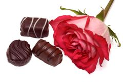 Rosa e chocolate Fotografia de Stock