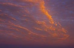 Rosa e cielo di tramonto dell'oro Fotografia Stock Libera da Diritti