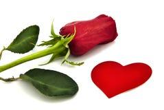 Rosa e coração. Imagens de Stock