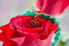 Rosa e coração do vermelho com amor imagens de stock