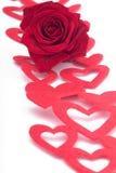 Rosa e corações Foto de Stock